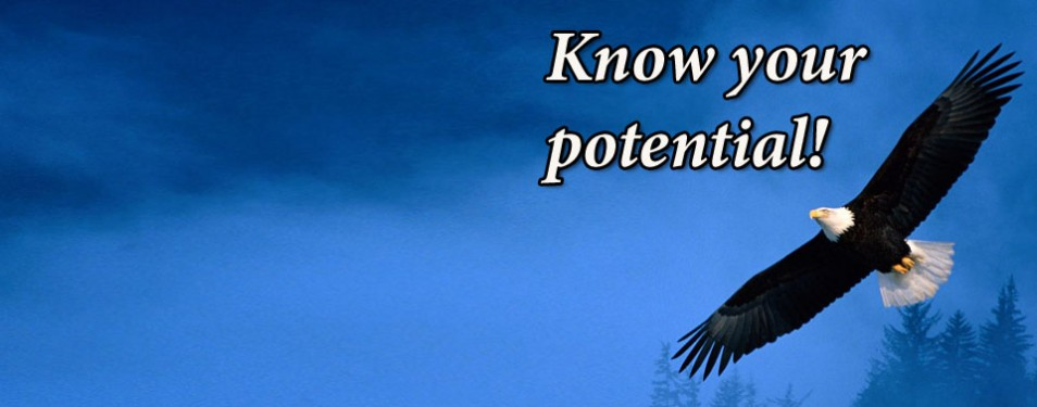 Know your potential!